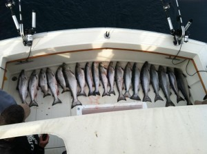 The catch is only one indicator of the best charter fishing on Lake Michigan.